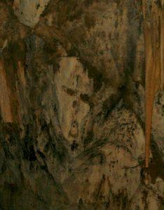 Rosto do Diabo - Caverna do Diabo
